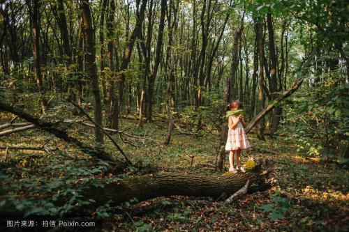 """荷兰的""""另类育儿经"""":找个深夜,把小孩丢到森林里?专业坑娃?"""