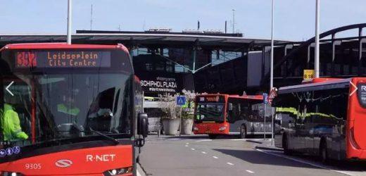 荷兰公交价格比自驾还贵!10年涨幅达30%,乘客:我太难了
